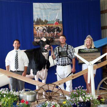 2015 Minnesota State Holstein Show