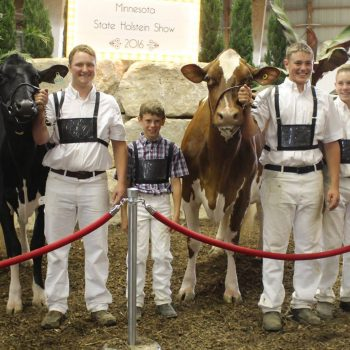 Minnesota Junior Holstein Show 2016